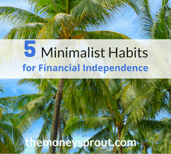 Minimalist Habits for Financial Independence