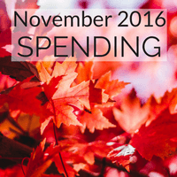 How did we spend our money in November?