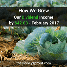 How We Grew Our Dividend Income by $42.03 - February 2017