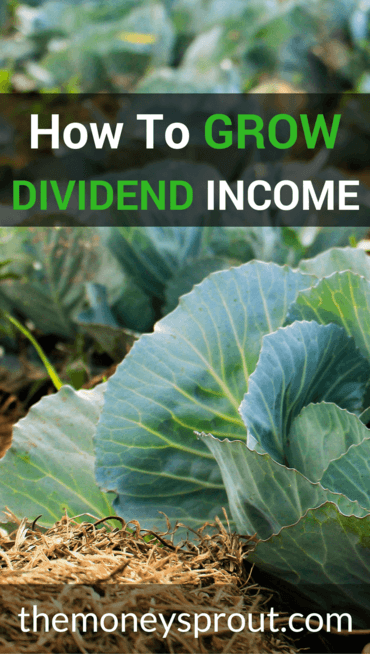 How to Grow Your Dividend Income Slowly Each Month