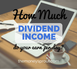 How Much Dividend Income do you Earn per Day?