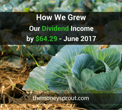 How We Grew Our Dividend Income by $64.29