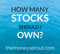 How Many Dividend Stocks Should I Own?